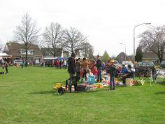 Schoonoord vrijmarkt en oranjefeest 30 april 2013