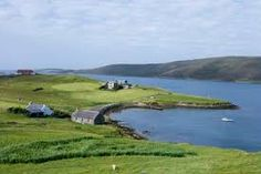 Shetland Islands. The real reasons for the lack of trees are to do with clearance for firewood and the presence of sheep, which have prevented natural regeneration. Where sheep are excluded, trees grow with little or no shelter.