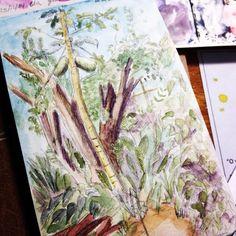 Comecei a desenhar o mamoeiro depois o p de cereja se no me engano E depois as outras plantinhas que iam aparecendo  pencil watercolor dwgdaily