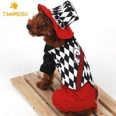 Halloween Magic Clothes For Magician Pet Costume Clothes Dog Jumpsuits Jacket Pet Coat Dogs Clothing Jumpsuits Newest
