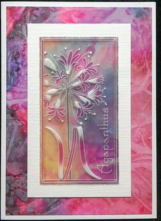 Claritystamp Agapanthus Groovi Plate on Indian Summer papers - by Lynne Lee Paper Cards, Diy Cards, Clarity Card, Parchment Cards, Glass Engraving, Agapanthus, Painted Rocks, Stencils, Birthday Cards
