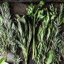 16 consejos para secar hierbas o plantas aromáticas y medicinales en casa ecoagricultor.com