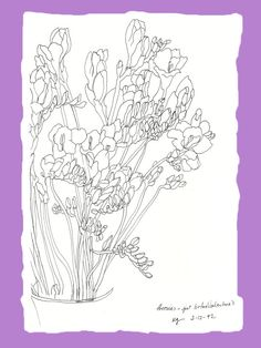 freesias - uptown ©Katy Gilmore 2012