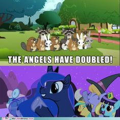 Mlp Memes, Funny Memes, Hilarious, Funny Love, Really Funny, Top Funny, Cute Jokes, Inspirational Memes, Fantasy Beasts