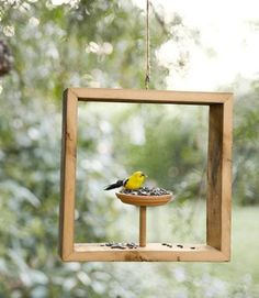 25 Best Homemade DIY Bird Feeders for All Kinds of Yards and Gardens