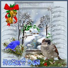 Halloween, Pets, Christmas, Animals, Xmas, Animales, Animaux, Navidad, Animal