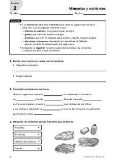 Actividades de refuerzo conocimiento del medio 6º Biology, Infographic, Homeschool, Classroom, Teacher, Science, Life, David, Flowers