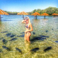Que lindo lugar…  (em Praia Da Figueira Bonito Ms)
