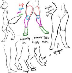 scribbled out a little digigrade leg thing for a bud, maybe you guys will find some use out of it too! Body Reference Drawing, Anatomy Reference, Art Reference Poses, Leg Reference, Art Poses, Drawing Poses, Drawing Tips, Art Drawings Sketches, Animal Drawings