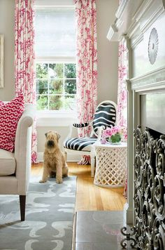 """""""VIVIAN"""" ~ Carrie's SOFT-COATED WHEATEN TERRIER ~ Fun Fact: Vivian loves, loves, and loves working at the studio! Martha O'hara interiors"""