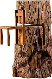 Tronco com cadeira