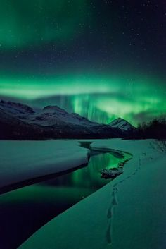 Tracks illuminated. Arctic Light Photo Ole C. Salomonsen Photography.