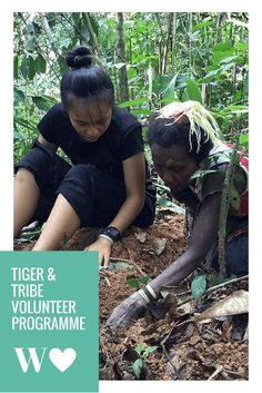 Volunteering with tribes & tigers in the Malaysian jungle 🐯🌴🌺