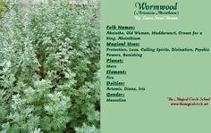 ∆ Enchantments... Wormwood Magical Properties - The Magical Circle School - www.themagicalcircle.net