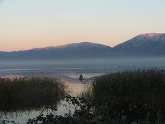 Pogradec..the lake