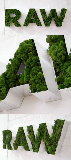 Moss Letters by Lond