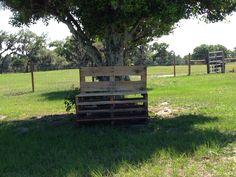 My pallet bench