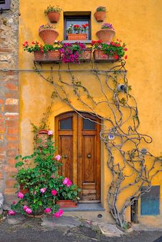 neat front door and yellow house with plants an vines
