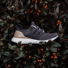 1be62ae7c5dd1 Rock City Kicks · New at RCK · Women s  Adidas UltraBoost Available at our  OHCS Branch in (Core Black Ash Pink