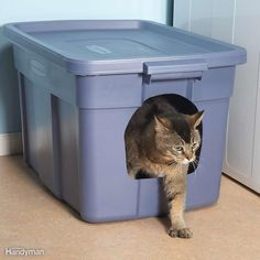 It's not fancy, but it's a cheap way to keep litter in the litter box where it belongs. Trace an opening on one end of a plastic storage container, then push a sharp razor knife into the plastic and cut out the opening. Pour in the litter and your cat will figure out the rest. Plus: How to Clean a Bathroom Faster and Better