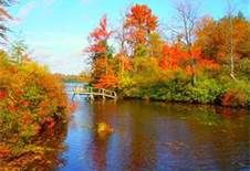 eagles mere pennsylvania images - Bing Images