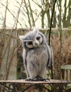 needle felted life size White faced scops owl