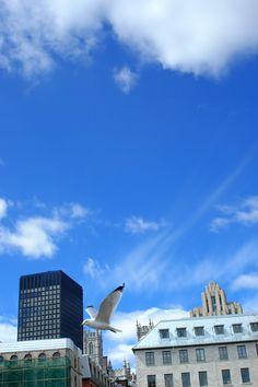 Inspirante au quotidien - crédit photo : Christian Grandmaison Exposition Photo, Place, Opera House, Marie, Photos, Images, Clouds, Building, Travel