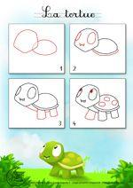 Dessin2_Comment dessiner une tortue ?