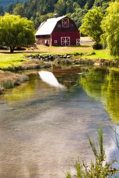 red barn + pond, port angeles, washington
