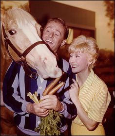 """""""MISTER ED"""",  A HORSE IS A HORSE OF COURSE ;) RAN 1961-1966 WITH STARS, ALAN YOUNG & CONNIE HINES."""