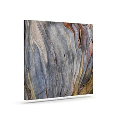 "Susan Sanders ""Milky Wood"" Gray Brown Outdoor Canvas Art"