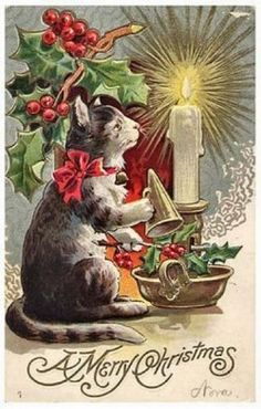 a merry Christmas cat embossed postcard xmas cats series holly candle vintage Merry Christmas Cat, Cat Christmas Cards, Christmas Graphics, Christmas Scenes, Christmas Animals, Retro Christmas, Christmas Greetings, Christmas Postcards, Christmas Sled