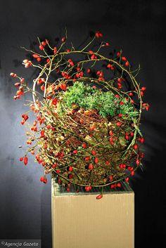 Dekoracje i stroiki na Wszystkich Świętych. Gniazdko z pędów jałowca otoczone ażurową plecionką z pędów dzikiej róży, której czerwone owoce dodają wigoru całej kompozycji Diy And Crafts, Wreaths, Garden, Red, Flowers, Fall, Projects, Gardens, Deco Mesh Wreaths