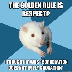 Obsessed with the Psychology Major Rat meme! But this is sooo true.
