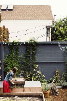 Source: Garden Visit: Fashion Designer Courtney Klein's Mission District Backyard