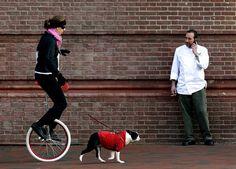 A mi me gusta montar en mi monociclo. Pero, me encanta montar con mi perra. Nosotras montamos en pueblo a menudo. Es muy divertido y Maisy piense es también.