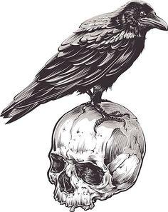 Crow on Skull vector art illustration