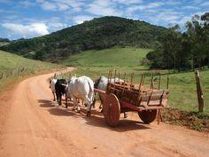 carro de bois | ainda há fazendeiros que realizam mutirões de carros de bois ...