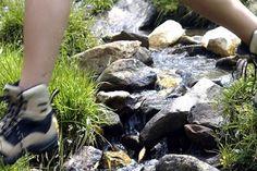 il #trekking è un'esperienza unica sarete immersi nella natura del #parco del #pollino