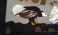Austin's Eagle