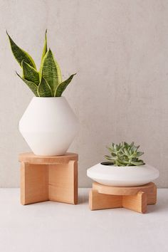Shop Areaware Tiered Wood Plant Pedestal Set at Urban Outfitters today. We carry all the latest styles, colors and brands for you to choose from right here. Modern Planters, Indoor Planters, Indoor Garden, Planter Pots, Different Plants, Plant Design, Urban Landscape, Container Gardening, Urban Gardening