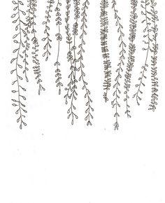 30 ways to draw plants and leaves - Ti .- 30 Möglichkeiten zum Zeichnen von Pflanzen und Blättern – Tiny Haus Familie Idee 30 ways to draw plants and leaves / - Leaf Drawing, Plant Drawing, Drawing Flowers, Floral Drawing, Vine Drawing, How To Draw Flowers, Simple Flower Drawing, Easy Flower Drawings, Wall Drawing