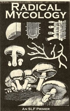 """An awesome description of mycellium, wild identification, safety, medicinal mushrooms, cooking/preservation, mycorestoration, cultivation, ethnomycology, mushroom dyes, mushroom paper, and the sacred. 40 Pages, Half letter size. """
