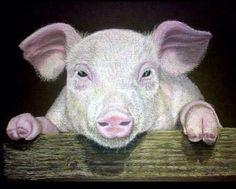 Peeking Pig by Rachael White m.facebook.com/...