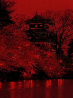 Rainbow Aesthetic, Aesthetic Colors, Aesthetic Images, Aesthetic Photo, Burgundy Aesthetic, Aesthetic Anime, Red Wallpaper, Book Wallpaper, Beautiful Wallpaper