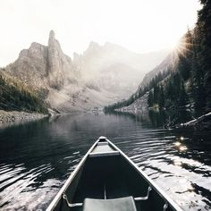grayskymorning:  Max Muench