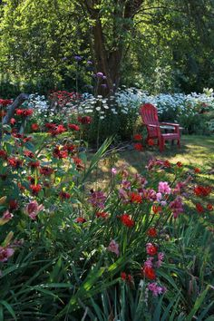 garden photography A garden evolves year after year - FineGardening Amazing Gardens, Beautiful Gardens, English Garden Design, Garden Photos, Organic Gardening, Gardening Tips, Gardening Books, Flower Gardening, Gardening Supplies