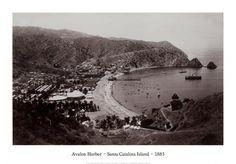 Avalon Harbor, Santa Catalina Island, California 1885 Art Print