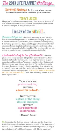 01/16/2013-2013 LIFE PLANNER CHALLENGE 2: WHERE ARE YOU BALANCED & WHAT COULD USE ATTENTION