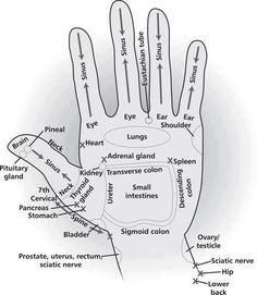 #Reflexology #Health Hand Reflexology Chart. http://www.iReflexology.com
